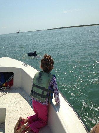 Dolphin Connection Texas: 2