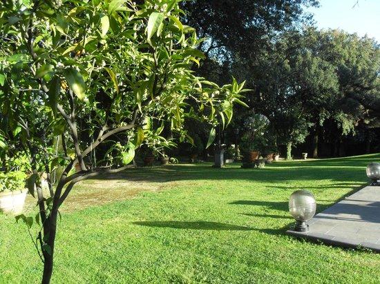Villa delle Rose: un cote du parc avec de baux arbres et fleurs