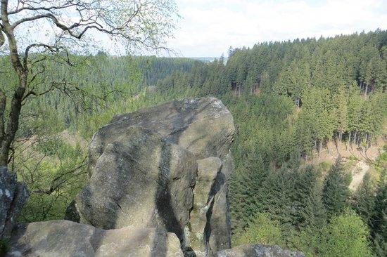 Lac de Robertville: Uitzicht tijdens wandeling (groene rechthoek)