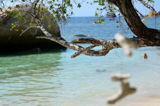 Taatoh Resort & Freedom Beach Resort: Freedom Beach