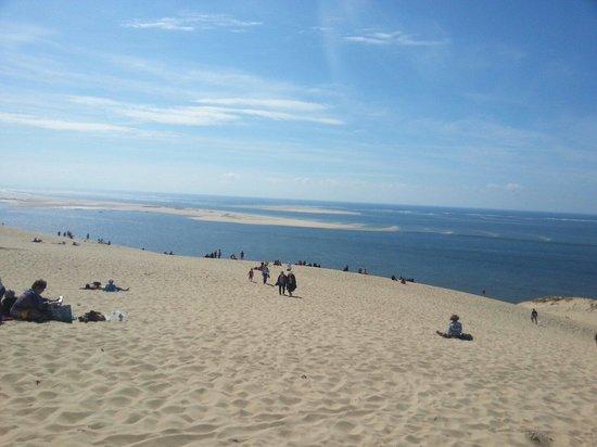 Dune du Pilat : La dune et le banc d arguin