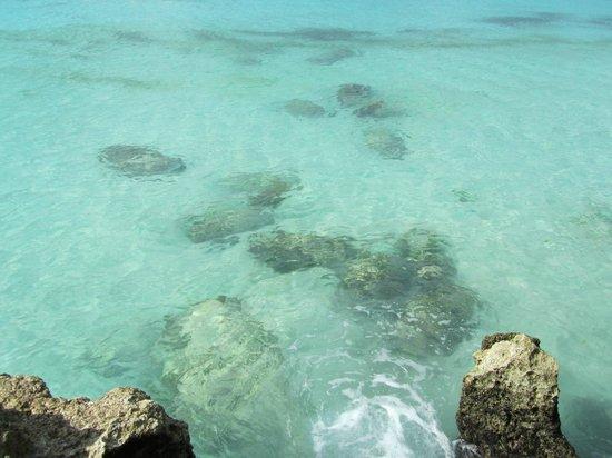 White Beach: Boracay 2013