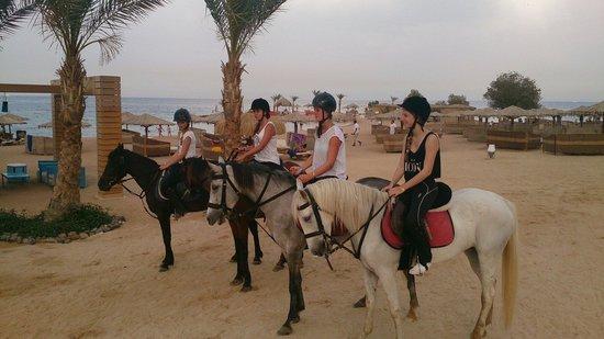 Mercure Hurghada Hotel : :)
