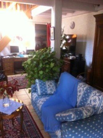Chambres D'hotes Villa Zaphira : LE SALON