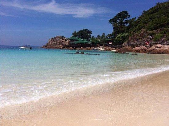 Laguna Redang Island Resort : The beach