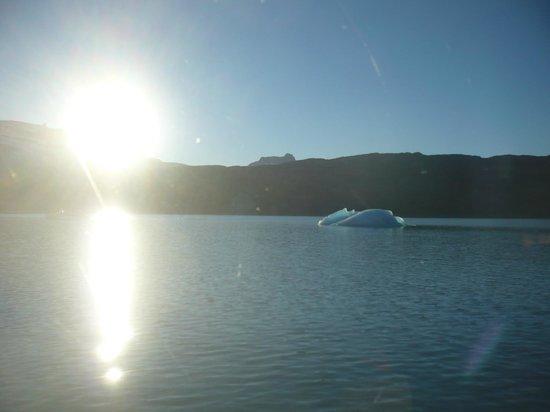Todo Glaciares Tour: Vista tempano