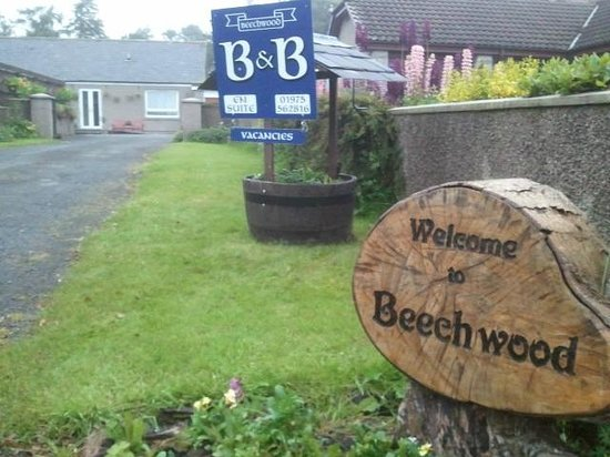 Beechwood Bed & Breakfast