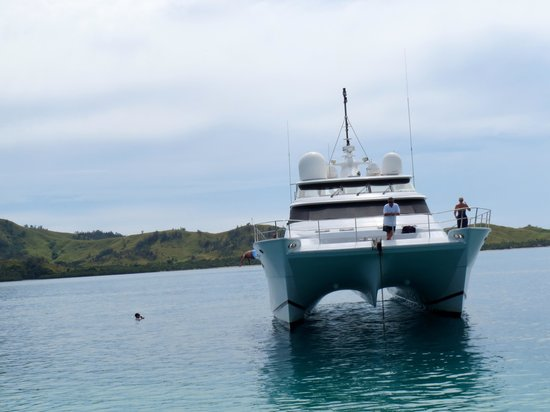 Coral Cats - Day Trips : Our boat