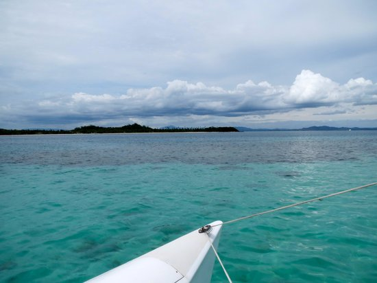 Coral Cats - Day Trips : Crystal Blue