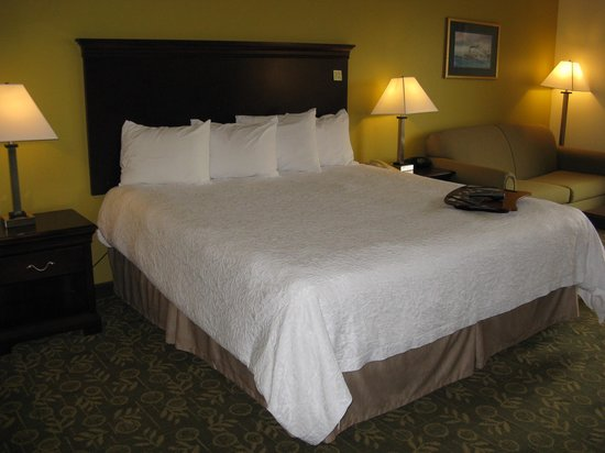 Hampton Inn Frankfort: Frankfort Hampton Inn -- King Bed