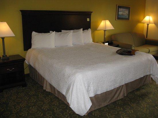 هامبتون إن فرانكفورت: Frankfort Hampton Inn -- King Bed