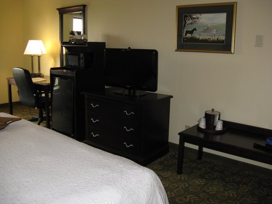 Hampton Inn Frankfort: Frankfort Hampton Inn -- King Room