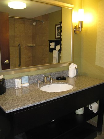 Hampton Inn Frankfort: Frankfort Hampton Inn -- Bath