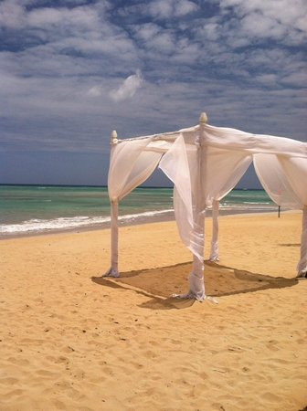 Dreams Punta Cana Resort & Spa : So beautiful