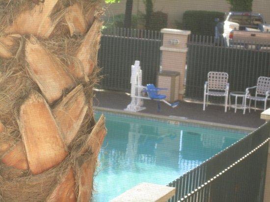 La Quinta Inn & Suites Fairfield - Napa Valley : equipement piscine