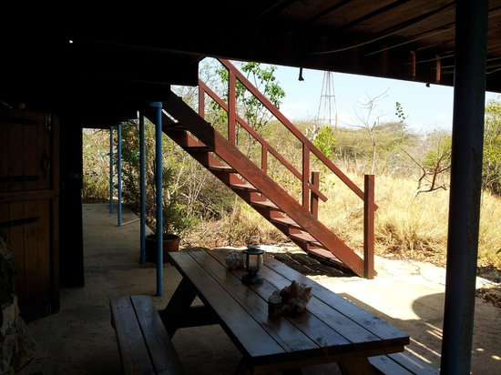 Auriga Ecolodge: Patio and stairs to upstairs dining and lounge area