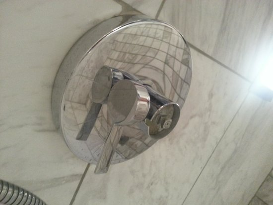 Palms Place Hotel and Spa: Shower... Broken.