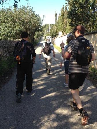 Hotel Bella Playa & Spa: organised walks