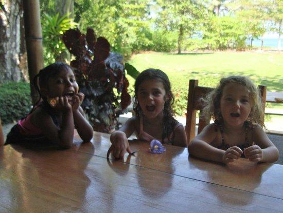 Iguana Lodge: wildlife