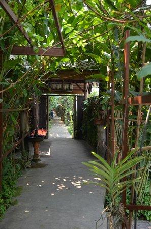 Shewe Wana Boutique Resort and Spa : Smukke omgivelser på Shewe Wana