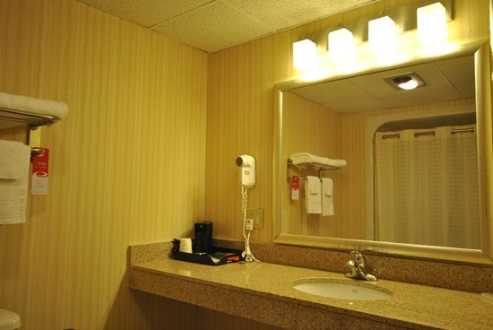 Econo Lodge Harpers Ferry: Guest bathroom