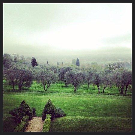 Villa Fontelunga : Morning mist rolling over olive groves