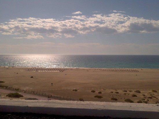 IBEROSTAR Fuerteventura Palace: Life's a beach