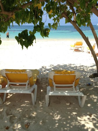 Iberostar Rose Hall Suites: Nice place to chill, under the tree on the beach.