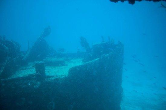 De Palm Tours: Atlantis Submarines Expedition: 40 metros de profundidade