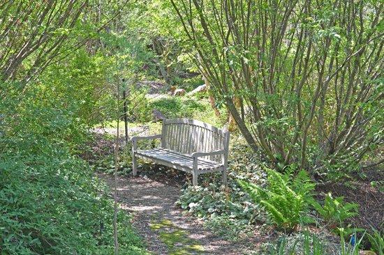 quarryhill botanical garden quarry hill garden features pleasant places to sit - Quarryhill Botanical Garden