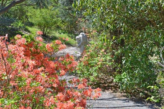 Quarryhill Botanical Garden: Beautiful Garden