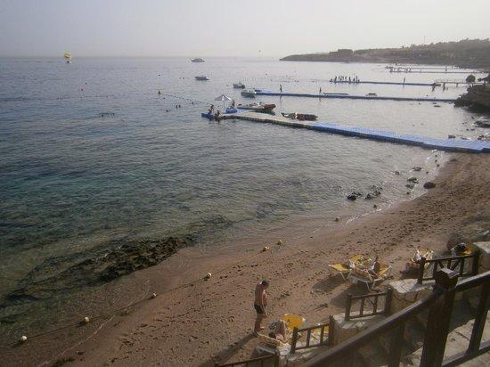 Hilton Sharks Bay Resort : Полоса пляжа и понтон отеля