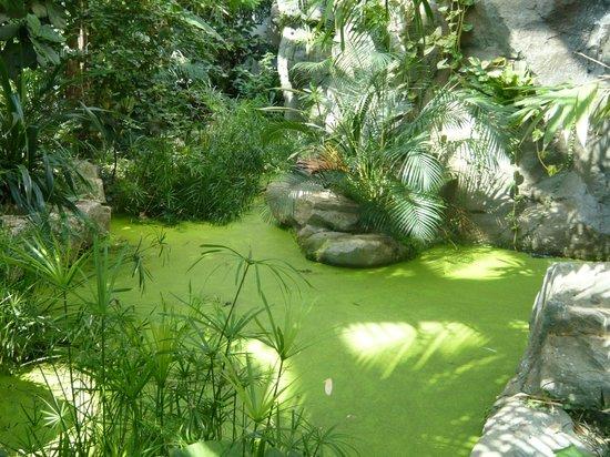 Zoologischer Garten (Berlin Zoo): jardines