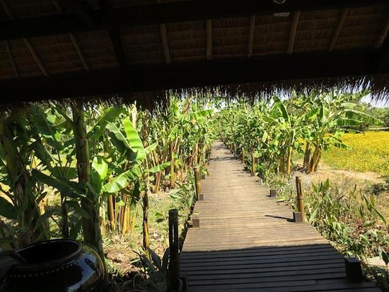 Inle Lake View Resort & Spa : The Dock