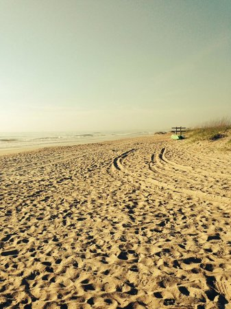 The Ritz-Carlton, Amelia Island: isolated beach in the morning!