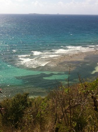 Virgin Islands Campground: Limestone Beach from the road near the campground