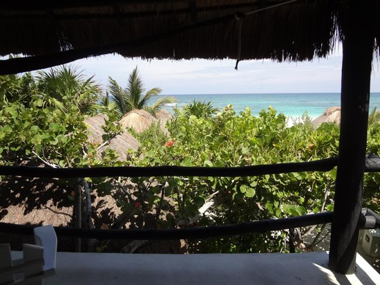 Coco Tulum: Cabana #18 view