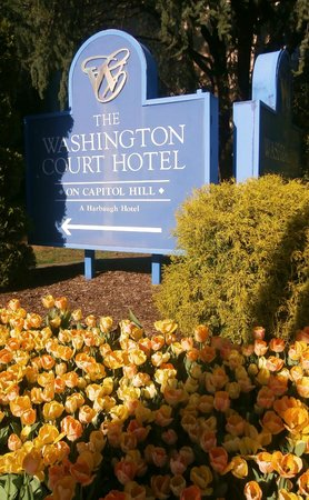 Washington Court Hotel on Capitol Hill: Tulips - a nice touch