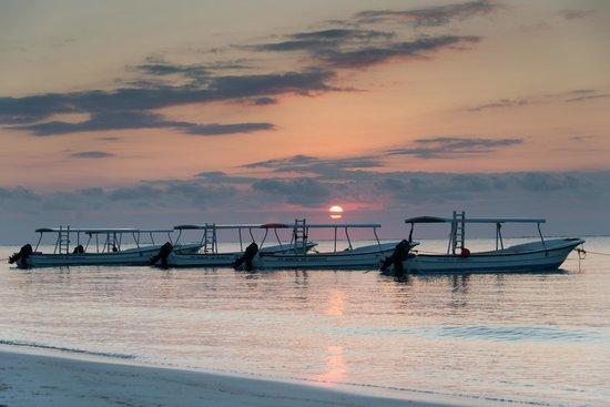 Secrets Silversands Riviera Cancun : Sunrise