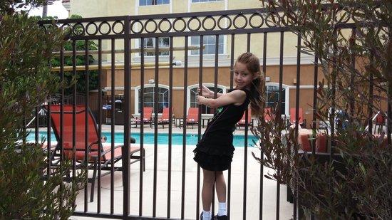Portofino Inn & Suites Anaheim Hotel: good bye my special pool