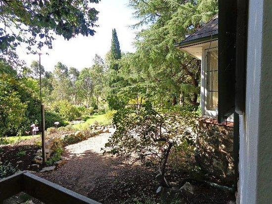 The Cedars: The gardens