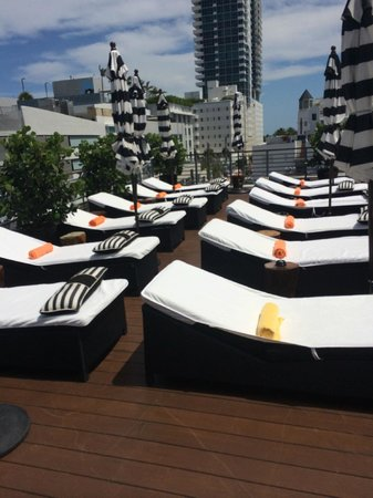 Riviera Hotel & Suites South Beach: tannin