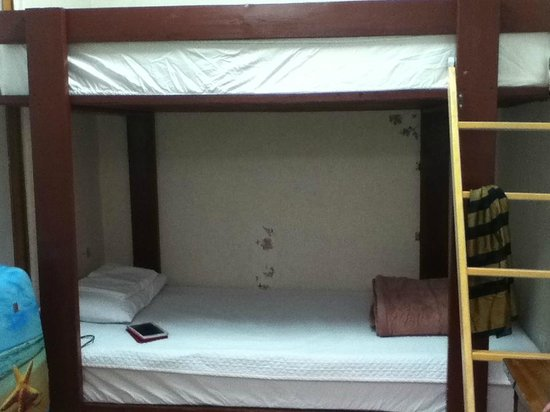 ICOS Guesthouse : room with double deck