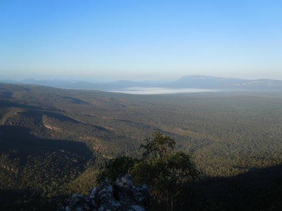 Wildlife Tours Australia: Grampians