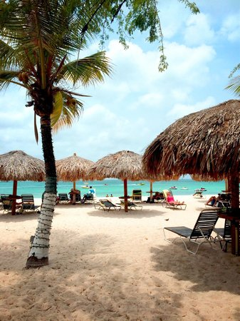 Amsterdam Manor Beach Resort: Paradise!