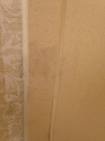 Country Inn & Suites By Carlson, Salisbury : Another dirt smudge in shower that we cleaned off