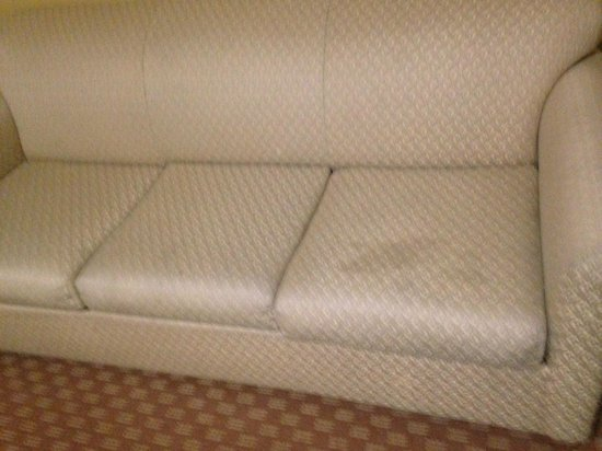 Country Inn & Suites By Carlson, Salisbury: Another view of the stained sofa