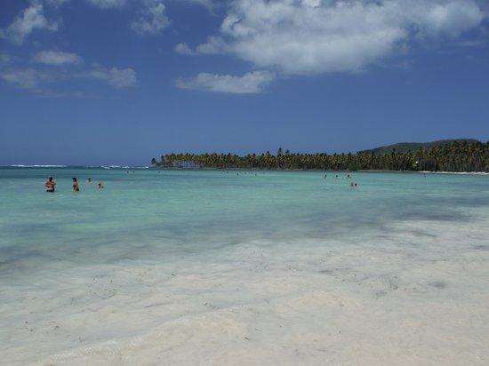 Grand Paradise Samana : beach