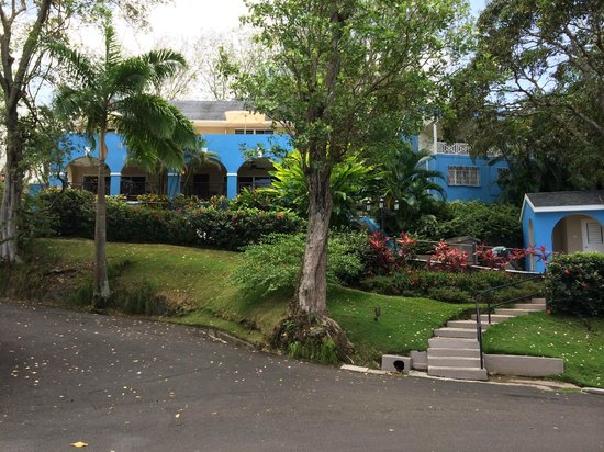 Sandals Regency La Toc : On the grounds