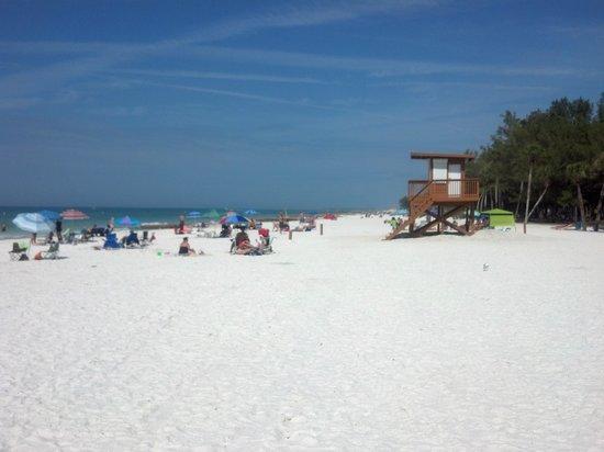 Coquina Beach, Bradenton Beach, FL